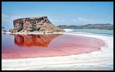 دریاچه ارومیه، یا به عبارتی نگین فیروزهای کشور، در شرایطی از پیش از دهه ۸۰ رو به خشکی نهاد که دریاچههای دیگری همچون دریاچه آرال در آسیای مرکزی و سالت لیک در آمریکا از خشکی نجات یافتند. دریاچه آب شور آرال در آسیای میانه نیز به این وضع دچار شد،اما پس از خشکی با مدیریت کارشناسان به حالت طبیعی خود بازگشت. به طوریکه آرال اکنون چهار برابر سالهای پرآب دریاچه ارومیه آب دارد. دریاچه سالت لیک آمریکا هم سال ۱۹۶۰ میلادی دچار بحران خشکی شد اما اکنون با مدیریت […]